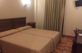 Habitacion doble-doble uso individual. 2 camas (3)